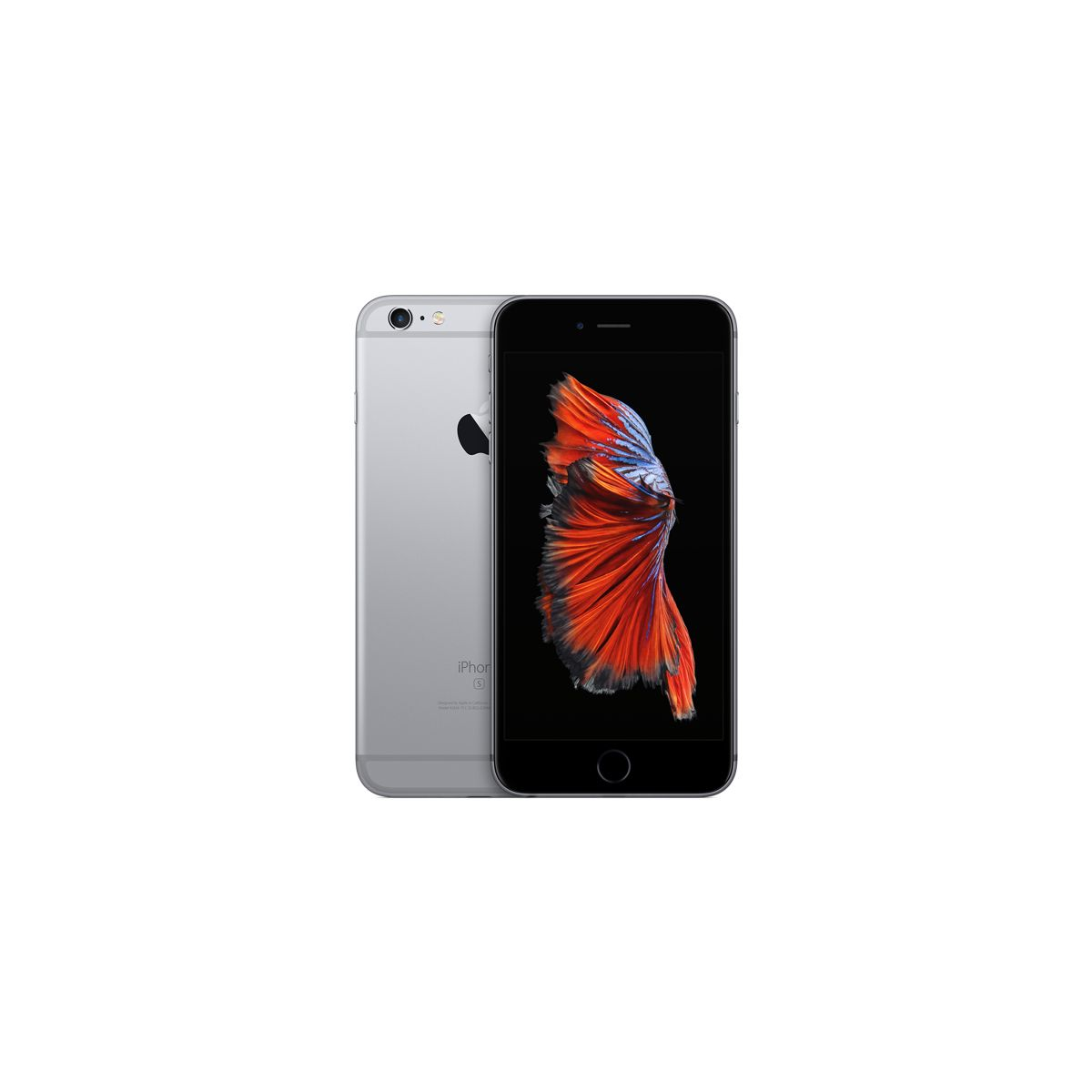 APPLE iPhone 6S Plus 16Go Gris sidéral (photo)
