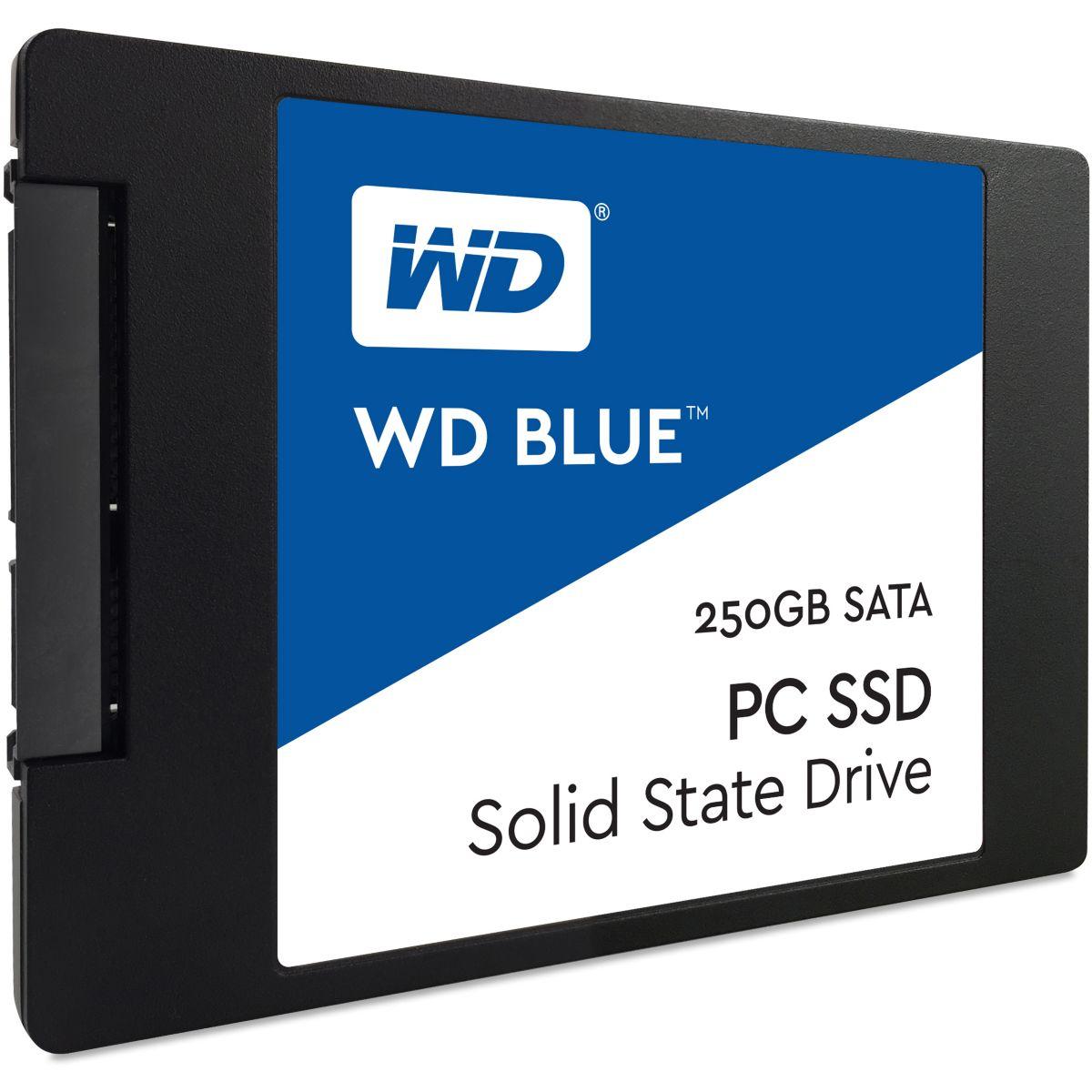 Disque WESTERN DIGITAL SSD 250Go