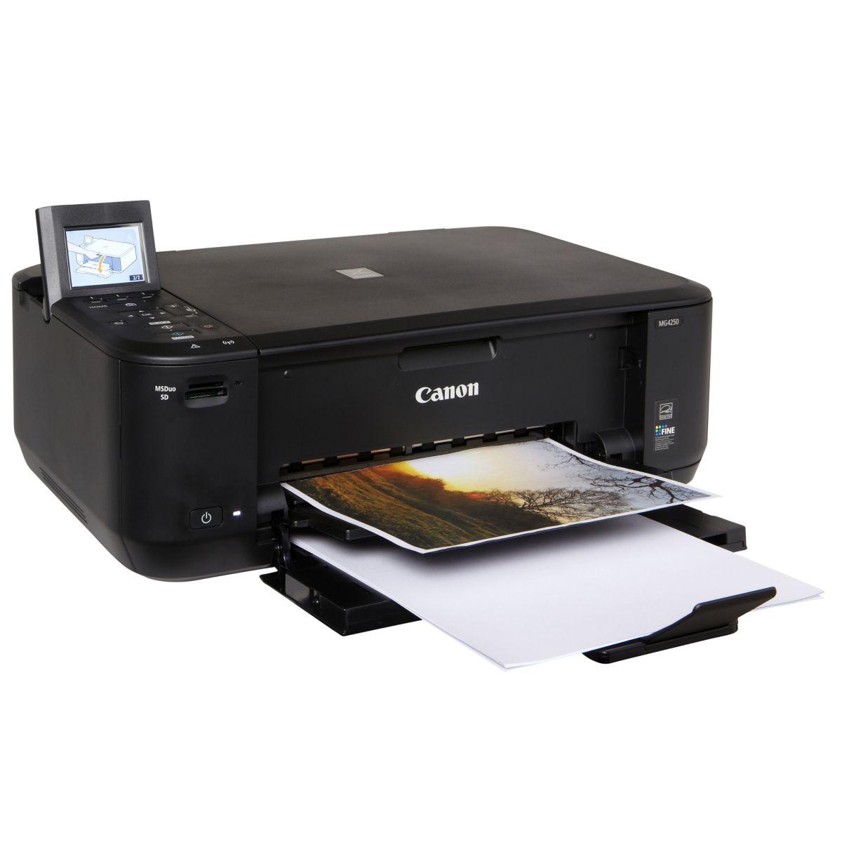 Imprimante multifonction jet d'encre CANON MG4250 (photo)