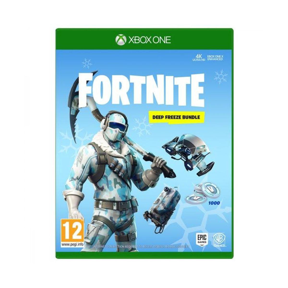 Jeu Xbox One WARNER Fortnite Pack Froid Eternel
