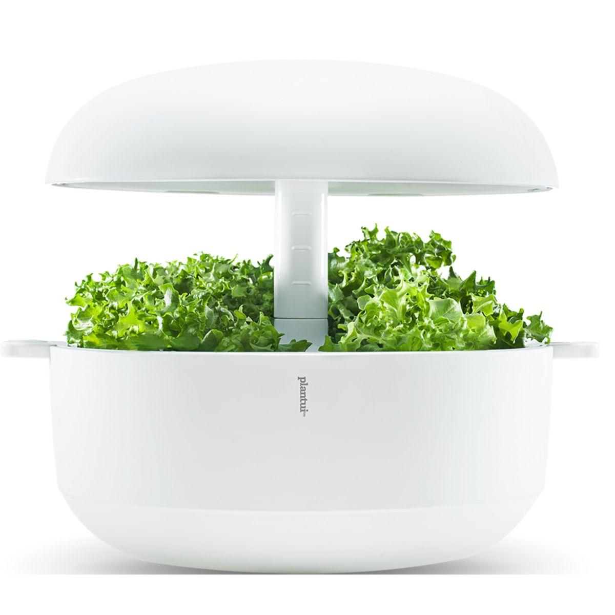 Jardin d'intérieur PLANTUI 6 Smart Garden Blanc